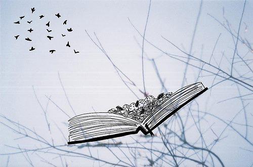 libros-con-pajaros