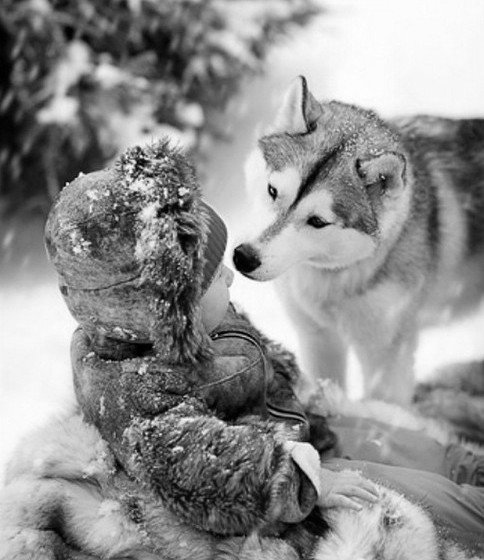 lobo y niño