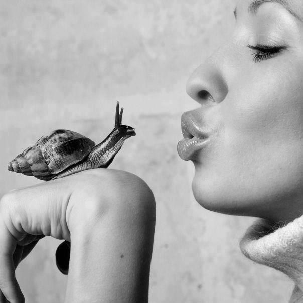 beso caracol