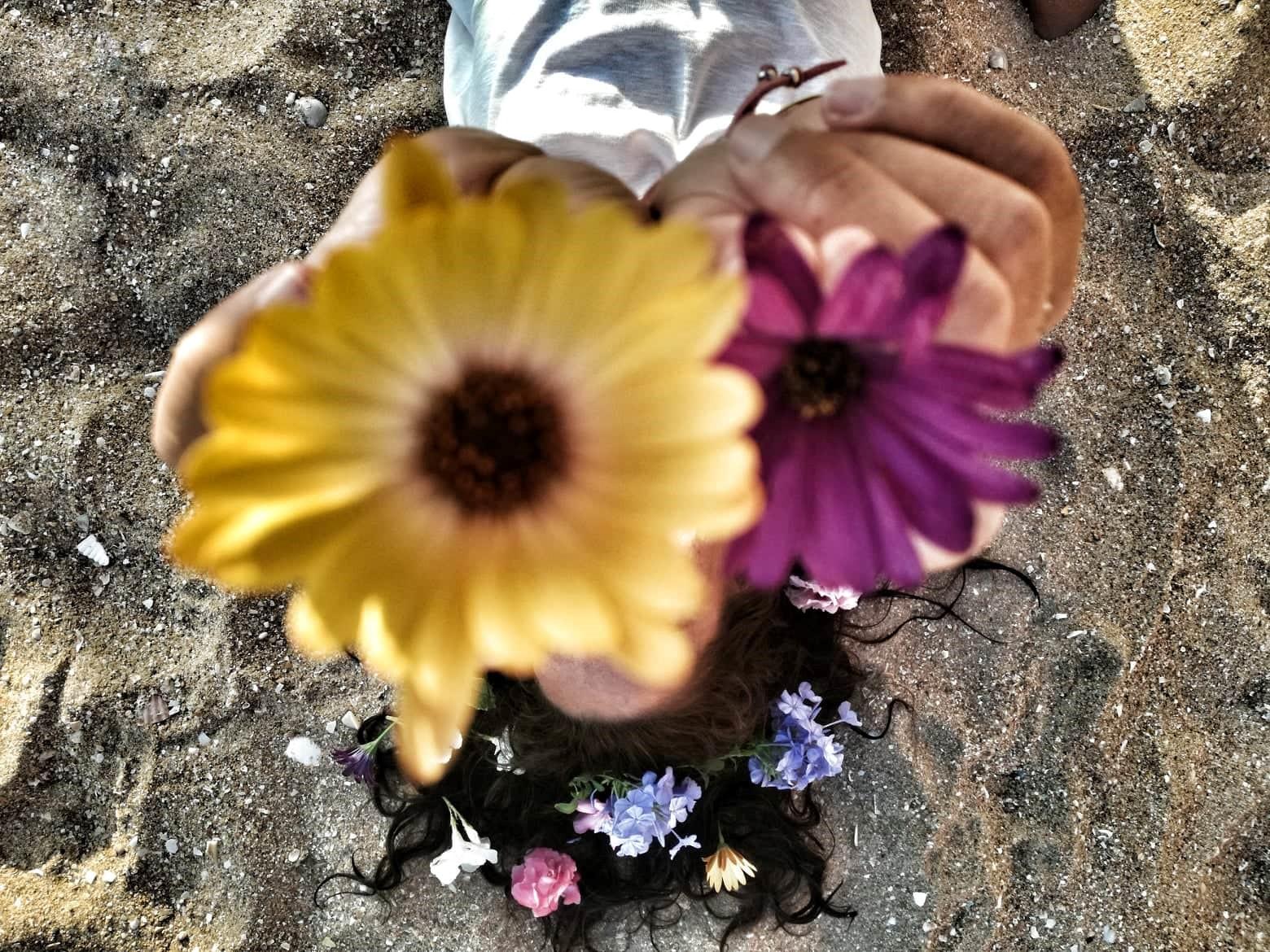 compartir flores