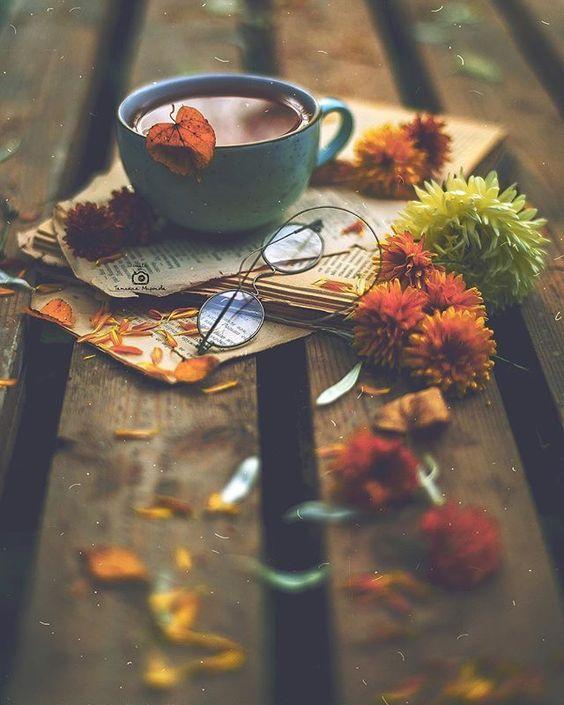 hojas de otoño en libro 2