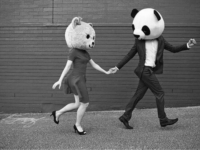 Oso panda y osa